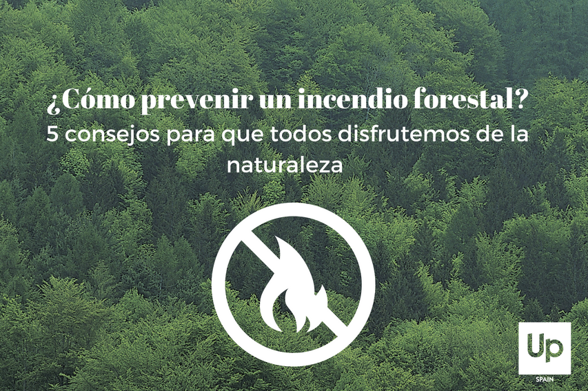 5 consejos para prevenir un incendio forestal (1)